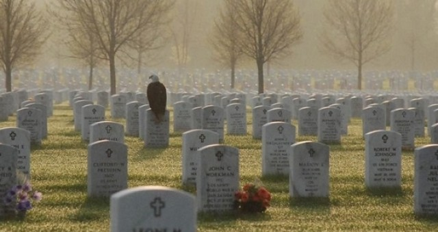 This Photo Of A Bald Eagle Perched On A Soldier's Gravestone Is Going Viral!