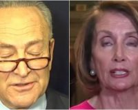 ALERT: Democrats To Take Action On Border Wall TODAY- Just One HUGE Problem