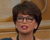 As Investigators Close In, Valerie Jarrett Panics, Goes On TV & Makes A Complete Fool Of Herself
